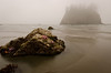 Foggy Morning at Second Beach<br /> Olympic National Park