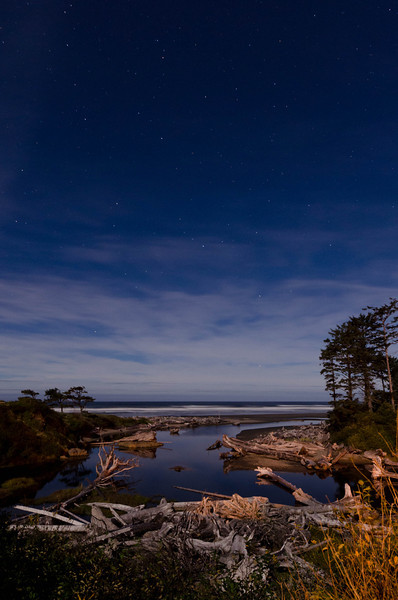Kalaloch Night Stars<br /> Olympic National Park