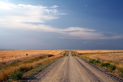 The Road to Cottonwood