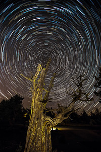 Startrails - Bend, Oregon