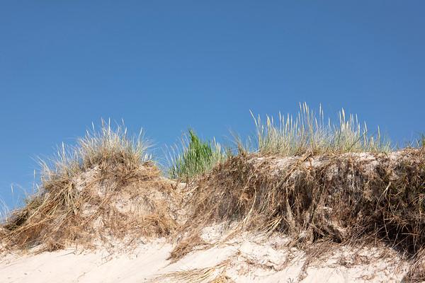 Darß Weststrand Ostsee