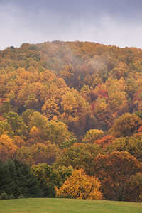 Fall Colors in the Mist