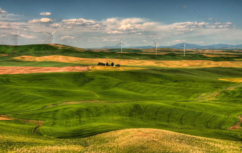 DSC_2442_wind_farm_july_07_2013_v2