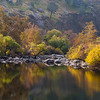 Fall Foliage on the Kern River Canyon, near Isabella, CA (11/2008)
