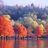 Blue Mountain Lake, Arkansas