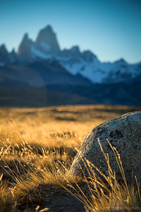 Late afternoon light catches the grasses near Mount Fitz Roy