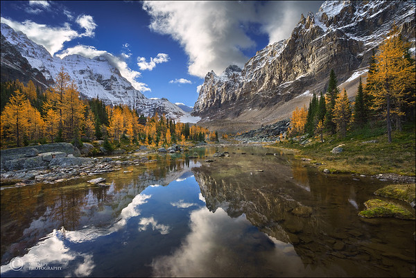 Lake O'hara Wilderness