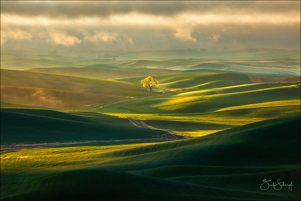 Valley of Light and Shadow