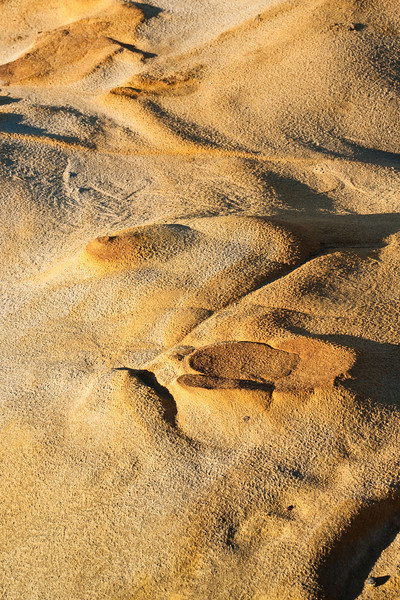 Sandstone, Point Lobos