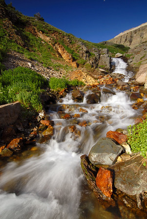 Yankee Boy Basin, near Ouray, Colorado