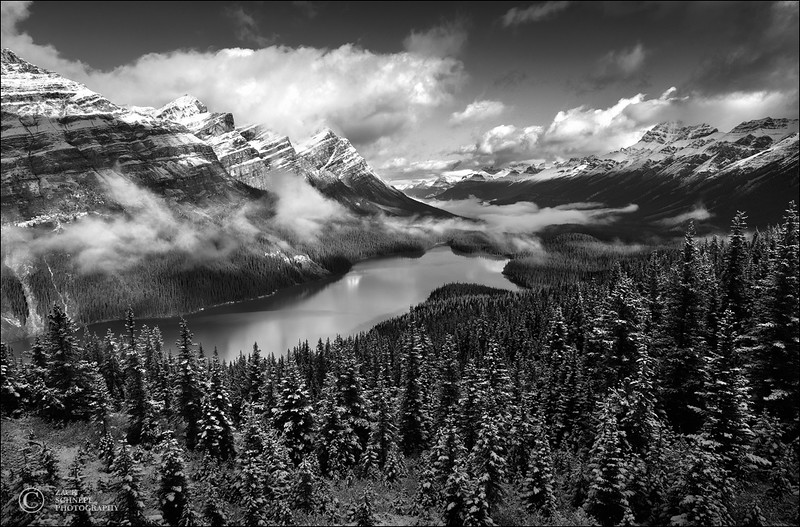 Fresh Snow Over Peyto Lake B&W
