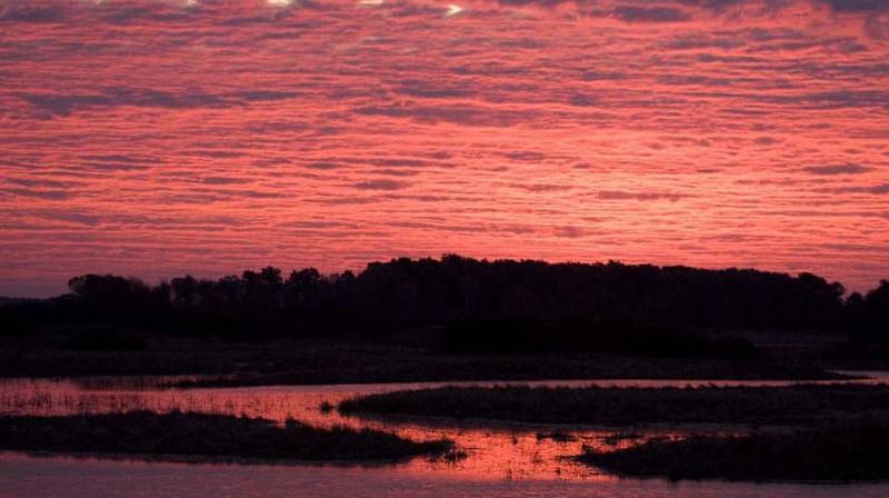 Crex Meadows sunset, WI