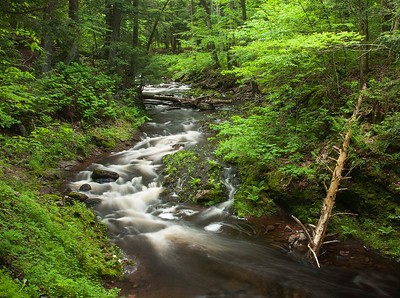 River in Porupine Mtns, MI
