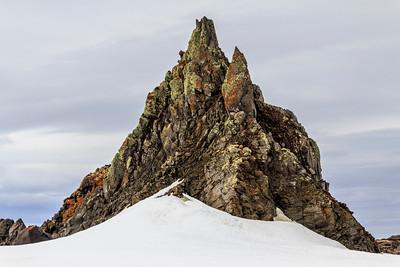 Lichen-covered cliffs, Antarctica