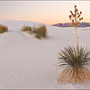 "<font color=""#FFFFFF"" size=""4"" face=""Verdana, Arial, Helvetica, sans-serif"">White Sands Sunrise</font><br> White Sands, New Mexico"