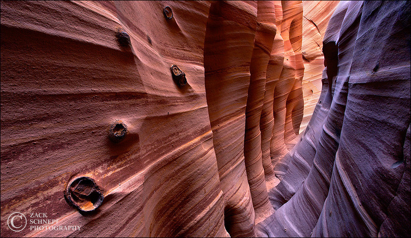 "<font color=""#FFFFFF"" size=""4"" face=""Verdana, Arial, Helvetica, sans-serif"">Zebra Canyon</font><br> Zebra Canyon, Utah"