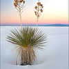"<font color=""#FFFFFF"" size=""4"" face=""Verdana, Arial, Helvetica, sans-serif"">White Sands Sunset</font><br> White Sands, New Mexico"