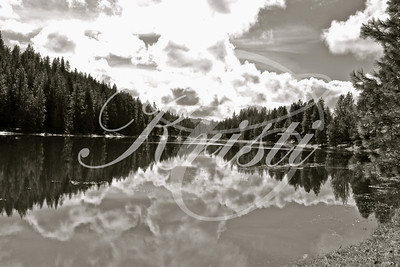 Mill Pond- Black/ White Glenwood, WA