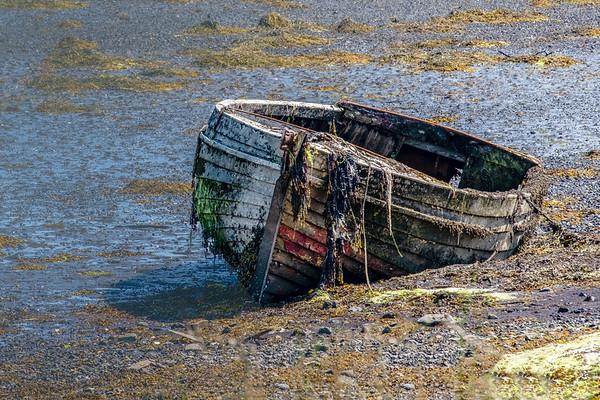 Abandoned Boat 2