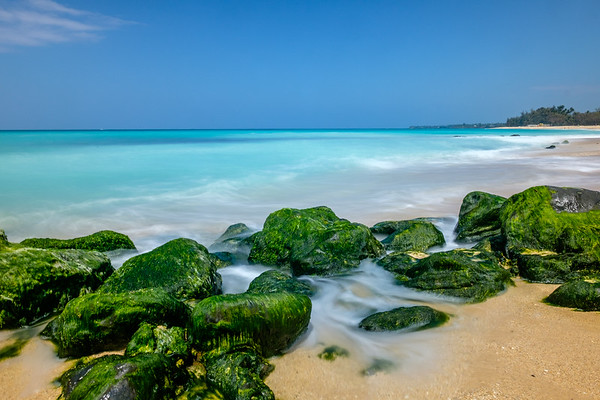 Sea Green Mossy Rocks