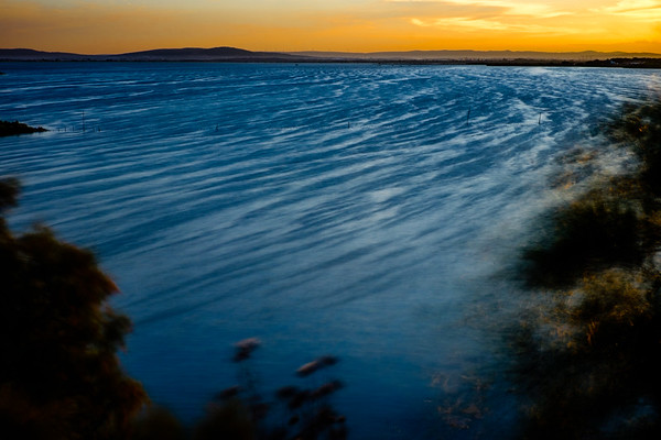 Tidal Movement