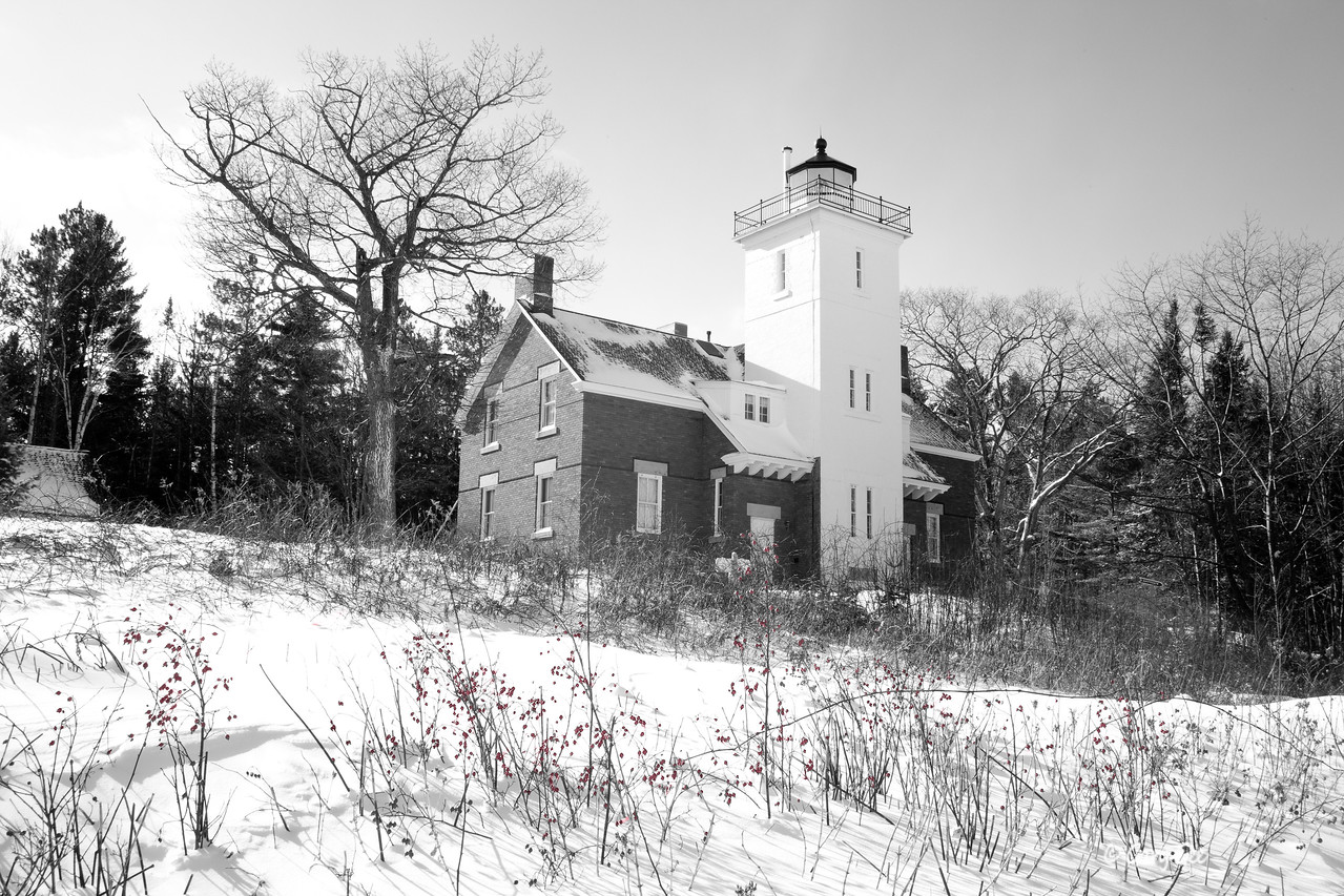 40 Mile Lighthouse - Black & White with red wild rose buds
