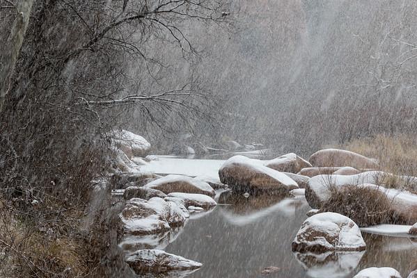 Snow 2014