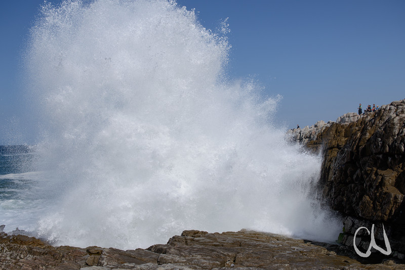 Hermanus Big Wave