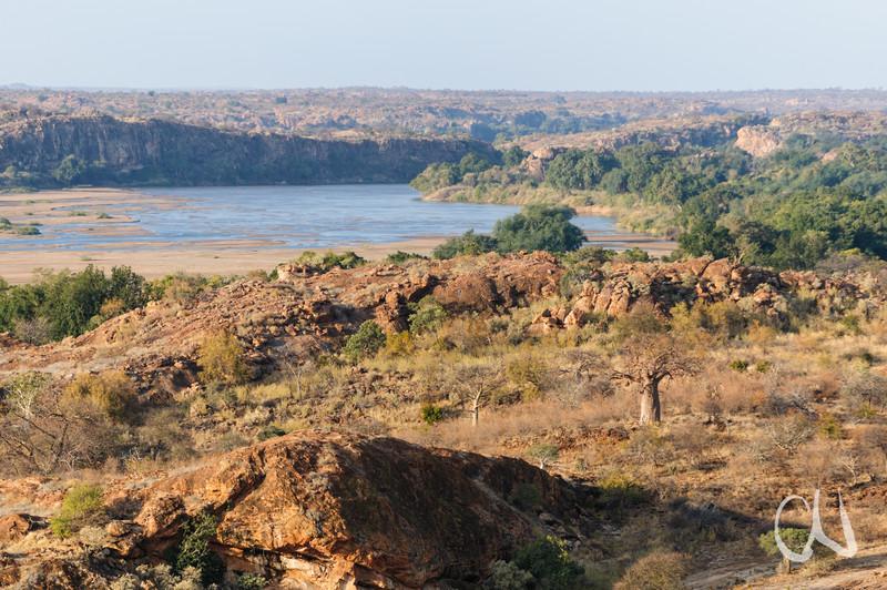 Limpopo-Fluss und Baobab-Bäume (Adansonia digitata), Mapungubwe National Park, Limpopo, Grenze zu Simbabwe, Dreiländereck Südafrika, Simbabwe, Botswana