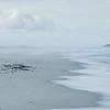 mussels and shipwreck at a beach, Atlantic Ocean, Muscheln und Schiffswrack an der Küste, Strand, West Coast National Park, Südafrika