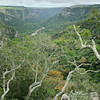 Oribi Gorge Nature Reserve, South Africa, Südafrika