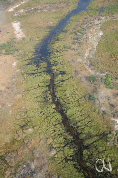 Flusslauf und Wildpfade im Okavango-Delta, Botswana Wildpfade im Okavango-Delta, Botswana, Rundflug über das Okavango, Delta, Maun, Botswana, Botsuana