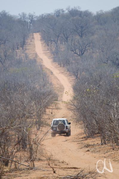 Allrad-Piste im Chobe-Nationalpark, Botswana, Chobe National Park, Nationalpark, Okavango Delta, [en] 4x4, sandy track, Chobe National Park, Botsuana