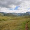 Grasland Südafrika