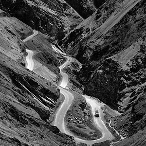 CF002138 Himalaya