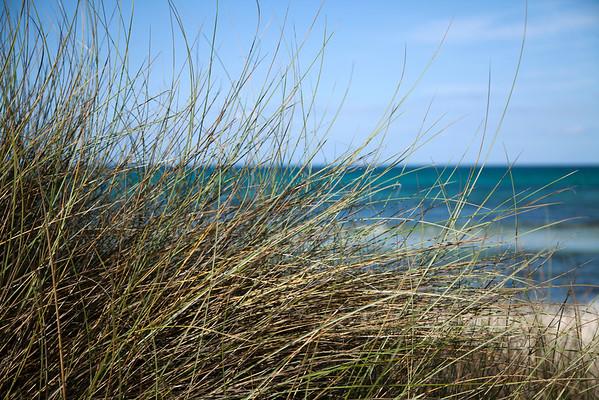 BT-Strand Nr.  42-38187721