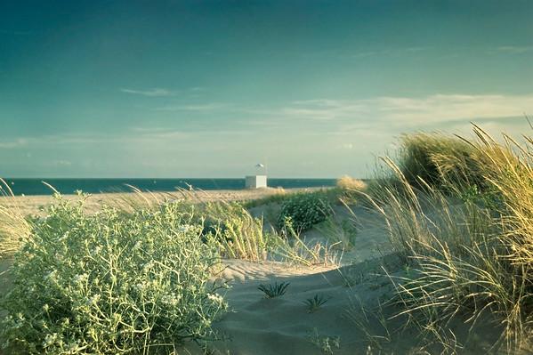 BT-Strand Nr.  42-50317788
