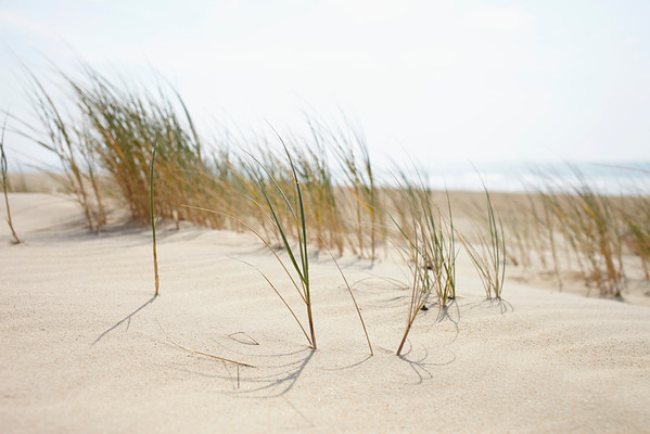 BT-Strand Nr.  600-06407741