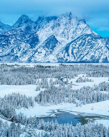 Silence of Freshly Fallen Snow