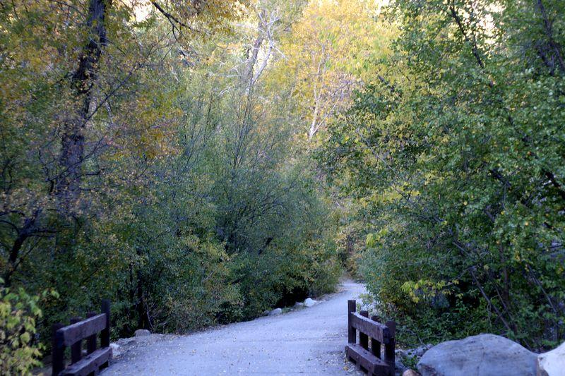 The Bridge In October