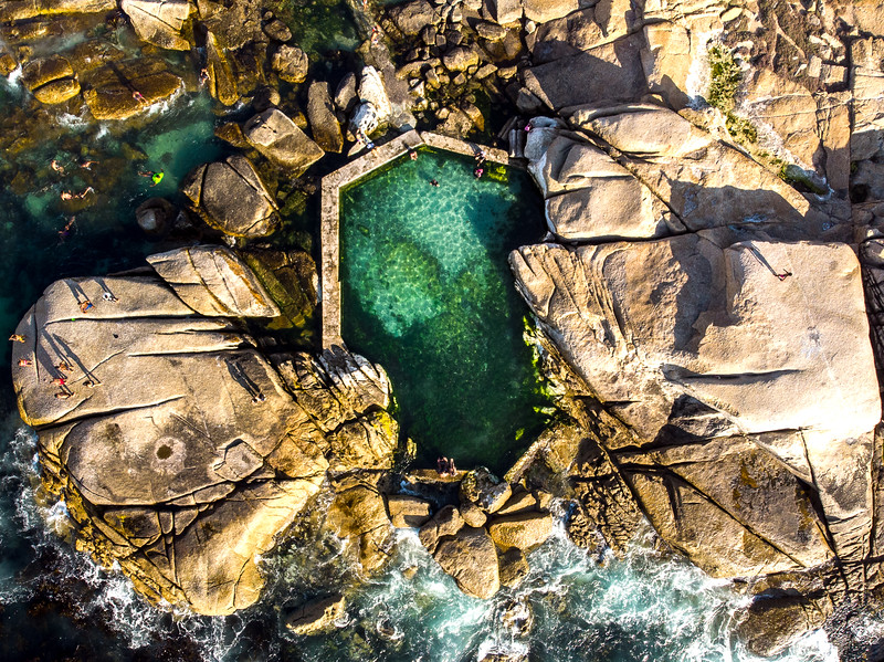 Saunders Rock tidal pool, 2020