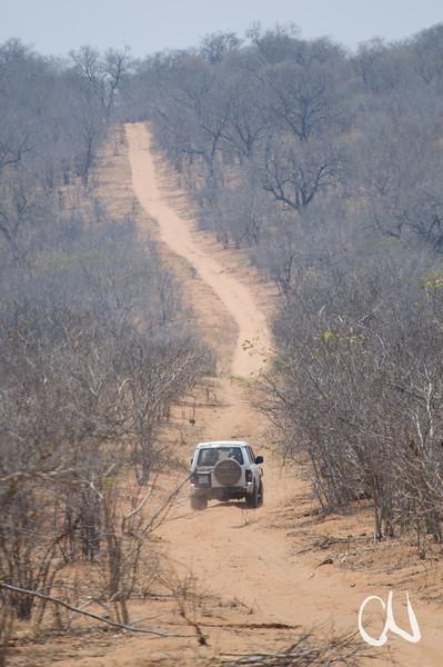 4x4, sandy track, Chobe National Park, Piste im Chobe-Nationalpark, Botswana, Botsuana, Chobe National Park, Nationalpark, Okavango Delta, Botswana, Botsuana