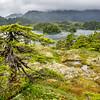 Granit Bay