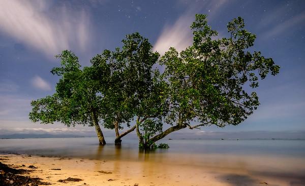 Sunrise Beach Nightscape 2
