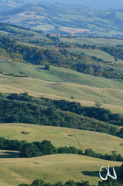Hügellandschaft, Alta Maremma, bei Monticello Amiata, Toskana, Italien, Tuscany, Italy, Maremma