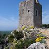 Turmruine, Torre di Castelmarino, Maremma-Naturpark, Parco della Maremma, Toskana, Italien, Tuscany, Italy
