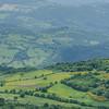 mosaikartige Landschaft mit Schafherde und gelbem Pfriemenginster (Spartium junceum) am Südhang des Monte Labbro, Maremma, Toskana, Provinz Grosseto, Italien