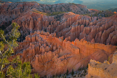 "Colorful canyon walls and ""hoodoos"" in Bryce Canyon National Park."