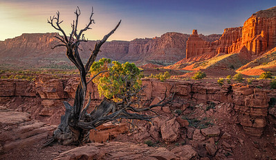 Sunset light on cliffs and canyon. Capitol Reef National Park.