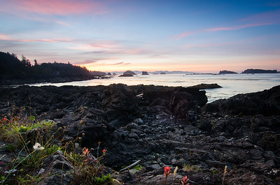 Ucluelet Sunrise